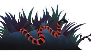 Hospedando a La Serpiente...