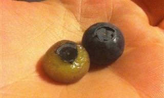 15 Frutas Que Se Ven Mejor Con Cáscara