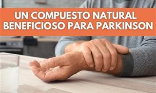Nuevo Tratamiento Para El Parkinson Basado En Aceites Esenciales