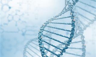 Quiz: ¿Tienes Los Conocimientos Básicos De Biología?
