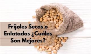 Comparación De Precio y Nutrición De Los Frijoles Secos y Los Enlatados