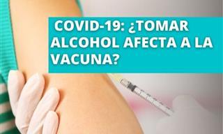 Vacuna Covid-19:  ¿Se Debe Evitar El Alcohol?