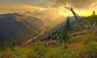 17 Lugares Imperdibles Durante La Primavera