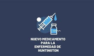 Este Medicamento Experimental  Podría Combatir La Enfermedad De Huntington