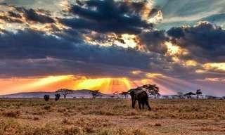 ¡Una Auténtica Experiencia Africana En Tanzania!