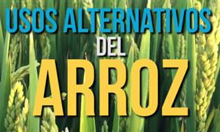 Alternativos Usos Del Arroz