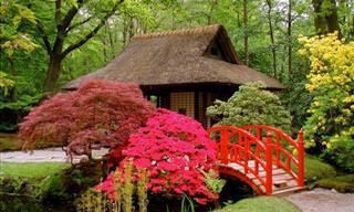 ¡Los Veinte Jardines Japoneses Más Increíbles Del Mundo!