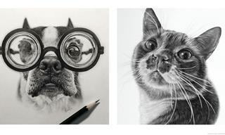 15 Sorprendentes Retratos Hiperrealistas De Animales