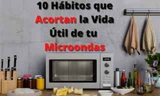 10 Malas Costumbres Que Acortan La Vida De Tu Microondas