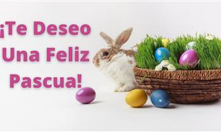 Tan Solo Quiero Desearte Una Feliz Pascua