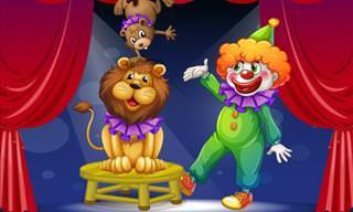 Chiste: El Circo Viene a La Ciudad