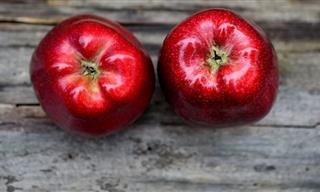 Las Deliciosas Manzanas y Sus Increíbles Beneficios a La Salud
