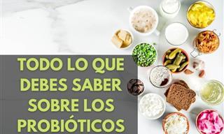 Te Presentamos Nuestros Mejores Artículos Sobre Los Probióticos
