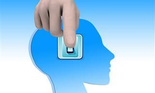 Los Efectos De Las Quejas Sobre El Cerebro Humano
