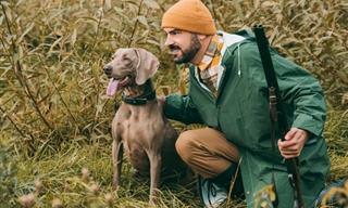 Chiste: Los Perros Cazadores