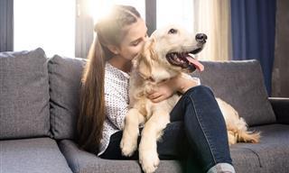 """Estudio: Tu Perro Reacciona Positivamente Cuando Le Dices """"Te Amo"""""""