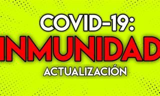 Aquí Está La Información Más Actual Sobre Covid-19 e Inmunidad