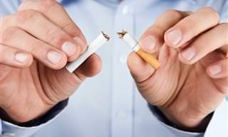 Apaga Tu Último Cigarrillo Y No Engordes Ni Un Gramo