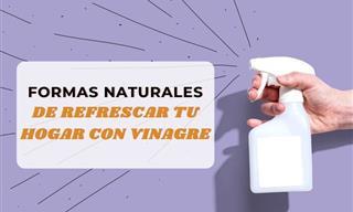 Aromatizante Natural a Base De Vinagre Para Refrescar y Eliminar Malos Olores