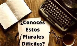 ¿Conoces El Plural De Estas Palabras Díficiles?