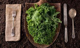 Averigua Por Qué La Col Kale Es Tan Beneficiosa