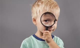 Test Para Encontrar Los Animales Ocultos En La Imagen