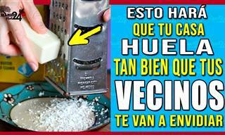 Prepara Tu Aromatizante Con Productos Caseros
