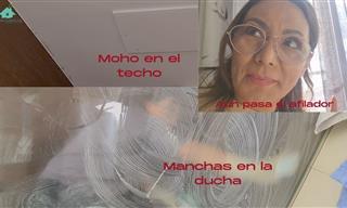 Limpia El Moho Del Techo y La Manchas De La Ducha