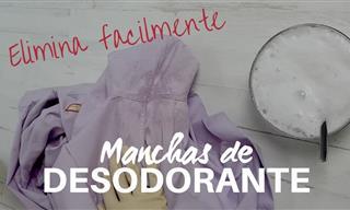 Elimina Las Manchas De Sudor y Desodorante En La Ropa