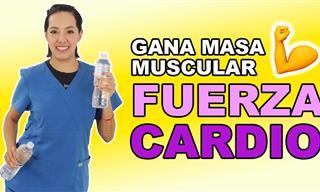 Ejercicios Para Adultos Mayores Para Desarrollar Masa Muscular