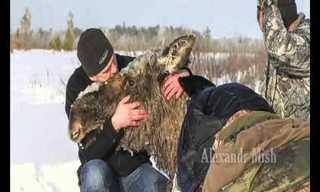 Cuando Los Humanos Salvan Animales