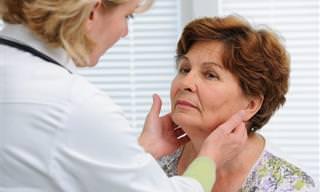 Guía: Todo Lo Que Necesitas Saber Sobre La Tiroides
