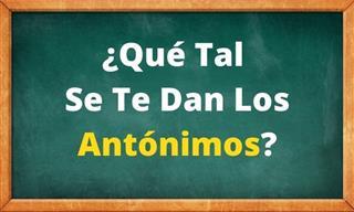Test: Dinos Cuál Es El Antónimo De Estas Palabras