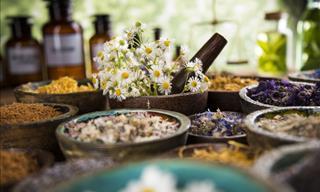 15 Plantas Medicinales Que Su Eficiencia Ha Sido Respaldada Por La Ciencia