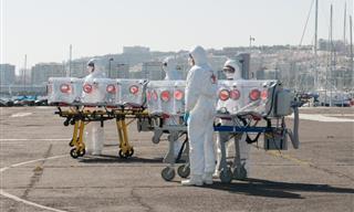 ¿A Qué Se Le Denomina Pandemia Según La OMS?