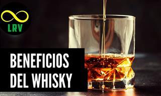 ¿Sabías Que El Whisky Es Beneficioso Para Tu Cuerpo?