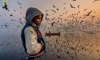 11 Fotografías Ganadoras De National Geographic