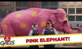 ¿Tu También Viste El Elefante Rosado?