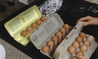 Analizamos La Verdad Sobre Los Huevos De Corral