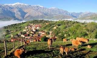 Breve Visita a Las Tierras Asturianas De Cabrales