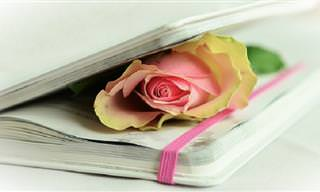 Hermosos Poemas Para Recordar Toda La Vida