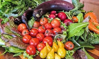 Razones Para Comenzar La Dieta Mediterránea