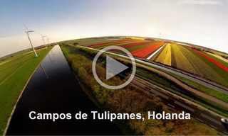 Viaje En Helicóptero Por 8 Destinos Fascinantes