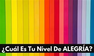 Test: El Color Que Elijas Refleja Tu Nivel De Alegría