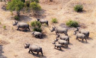 15 Lugares Que Debes Visitar En África