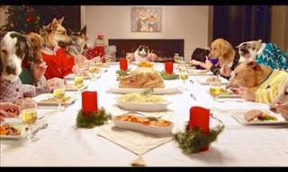 Divertido: Una Cena De Navidad Poco Convencional