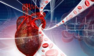 ¿Mala Circulación Sanguínea? Todo Lo Que Necesitas Saber