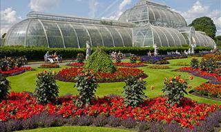 Escoge Tu Jardín Favorito y Visítalo Con Tan Sólo Un Clic