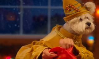 ¿Has Visto Estos Tiernos Ayudantes De Santa?
