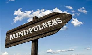 Mejore Su Calidad De Vida Con Mindfulness